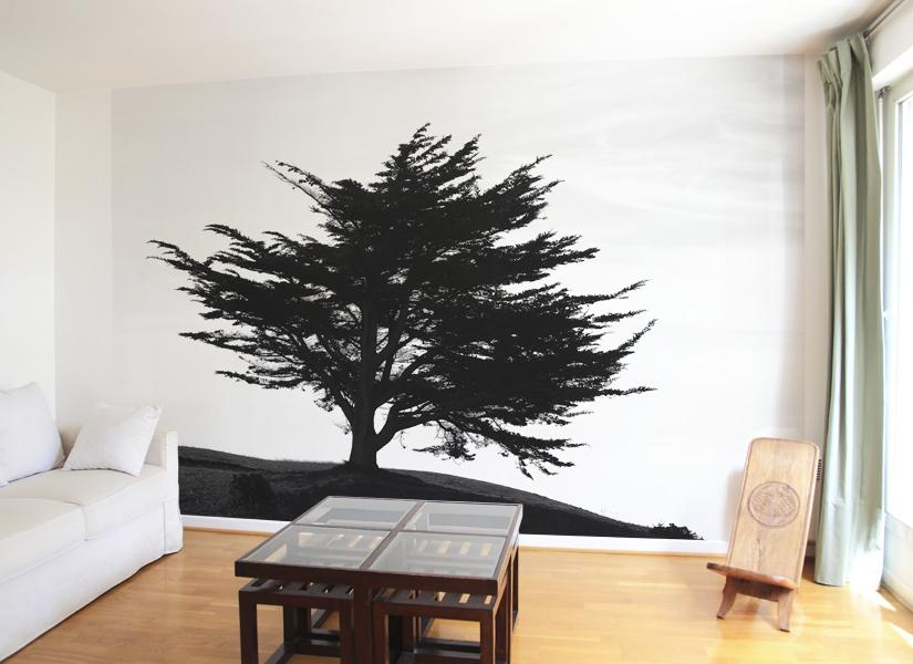 papier peint original d coration murale en dition limit e papier peint photo arbre myst rieux. Black Bedroom Furniture Sets. Home Design Ideas