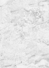 Papier peint CARTE et TERRITOIRE Noir et Blanc Medium