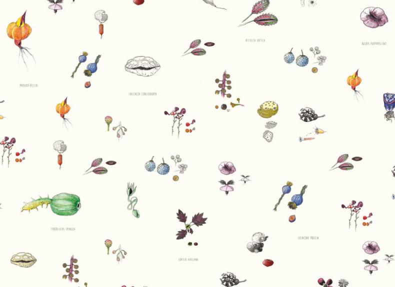 Papier peint Mirabilia Florum Couleur Panoramique