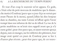 Papier peint Madeleine de Proust Medium