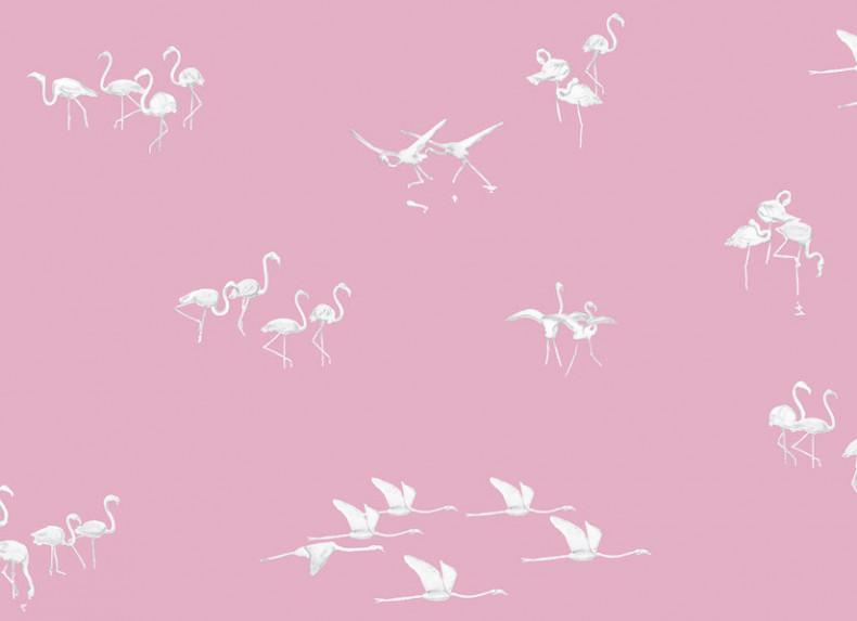 Papier peint Flamants blancs fond Rose Panoramique