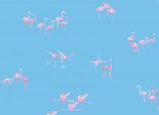 Papier peint Flamants Roses fond Bleu Panoramique