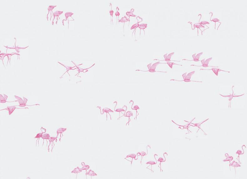Papier peint Flamants Roses fond Gris clair Panoramique