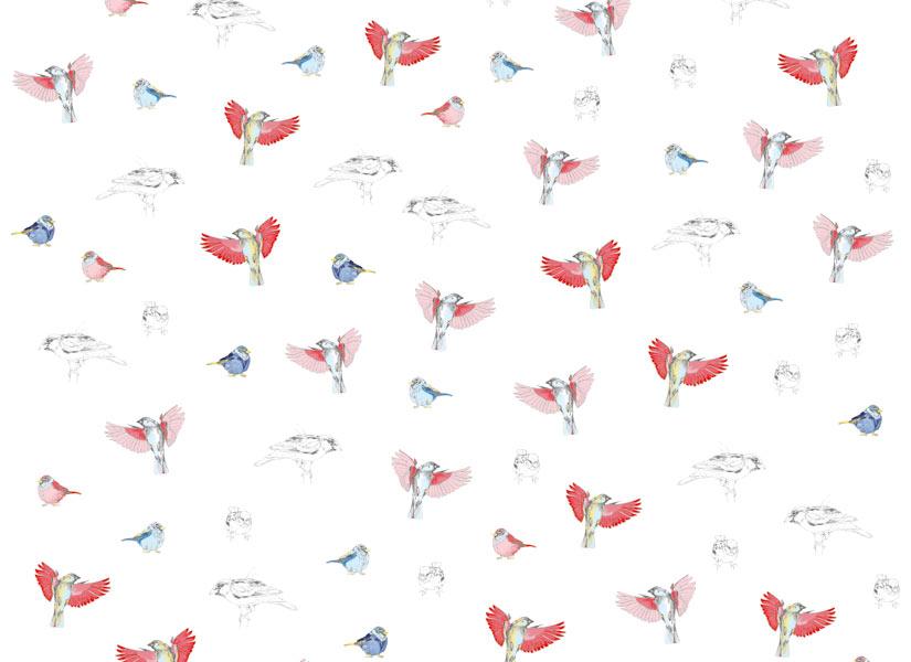 Papier peint original d coration murale en dition limit e papier pei - Papier peint oiseaux ...