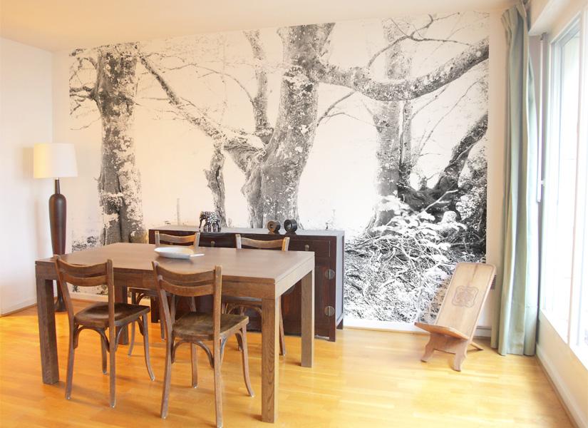 papier peint original d cor mural en dition limit e papier peint photo onirique. Black Bedroom Furniture Sets. Home Design Ideas