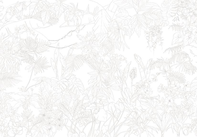 elegant papier peint jungle tropical trait gris panoramique with ohmywall. Black Bedroom Furniture Sets. Home Design Ideas