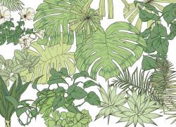 Papier peint Jungle Tropical BALI Big Panoramique
