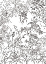 Papier peint Jungle Tropical Noir et Blanc Medium