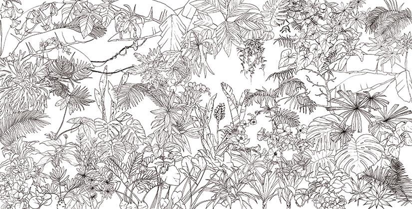 Papier Peint Floral Noir Et Blanc