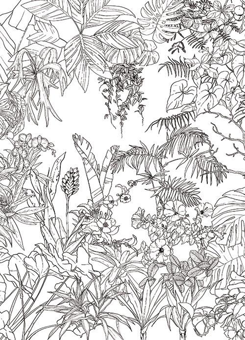 papier peint jungle tropical noir et blanc medium with ohmywall. Black Bedroom Furniture Sets. Home Design Ideas